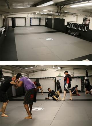 basement-martial-arts-gym-homepage